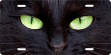 Black Cat with Green Eyes Auto Plate sku T9171ZG