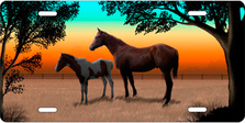 Full Color Horse and Foal Auto Platesku T9124D