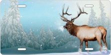 Winter Elk Auto Plate sku T2227I