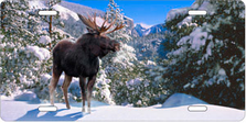 Snow Moose Auto Plate sku T2232F