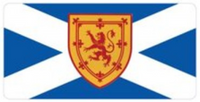 Scotland St. Andrews Cross Flag Plate LPO869
