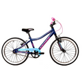 Avalanche Antix 20 Girl 2020 (Blue/Pink)