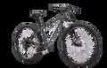 Silverback Stride Expert2021