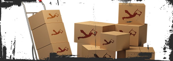 flideside-shipping700x250.png