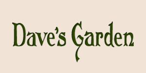 Dave's Garden