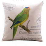 Green Parakeet Cushion Cover