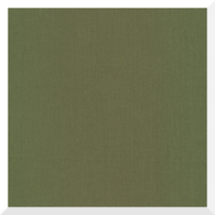 CIRRUS SOLID OLIVE by Cloud9 - 100% Organic Cotton (0.25m)