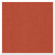 CIRRUS SOLID CINNAMON by Cloud9 - 100% Organic Cotton (0.25m)