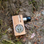GROUNDED ~  LAUNCH BOX VAPRIZER, solid  Cherry hardwood, powered by battery