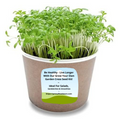 Everything you need to grow your own Garden Cress. 1 x container (picture for illustration only), a packet of food grade seeds and instructions. Seeds normally sprout ready for eating within 7 to 10 days. DO NOT use chlorinated tap water. Always use either bottled or filtered water.