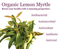 Lemon Myrtle Fine Cut Herbal Leaf: Enjoy as a hot (or cold) beverage, or use to garnish any savoury food.