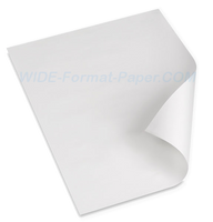 "Saving Vellum Papers 30-in x 42-in Xerox 6204, Xerox 6279, Vellum Oce Plotwave, Ricoh and Kip 30"" x 42"" 20 LB Vellum 100 Sheets 471A109"