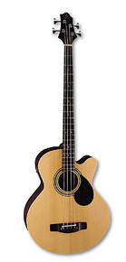 Greg Bennett Acoustic Bass W/ Pick Up