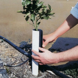 """Give a sapling support and protection with these corrugated Sprout Saver II tree wraps in 14""""H x 8""""W (W03)"""