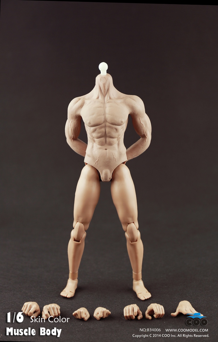 COO Model - Hybrid Rubber Muscular Male Body CM-B34006