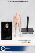 Asmus Toys - Teenager Body 3.0