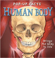 Pop-up Facts: Human Body by Emily Hawkins, Sue Harris, Kim Thompson & Steve Kingston