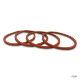 Vanquish Nozzle O-Ring | 005-577-0142-00 | 005577014200