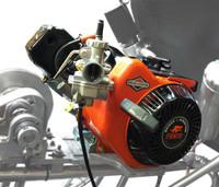 Local Option 206cc Engine for 13.90 ET