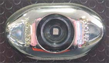 Amber 2 inch Oval LED Side Marker Light, with Clear Lens and Stainless Steel Surround. 12 Volt Only.