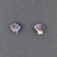 Wampum Scallop Post Earring