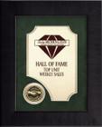 Emerald Framed Partnership Award FR37