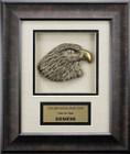 Dark Wood Grain Framed 3d  Silver Eagle Leadership Awards FR51