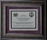 Custom Framed Recognition Award  FR56