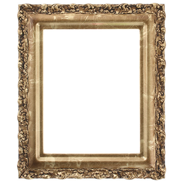 Rectangle Frame In Champagne Gold Finish Gold Leaf