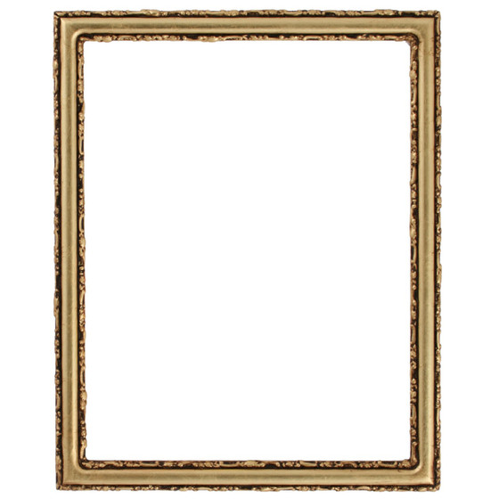 Virginia Rectangle Frame # 553 - Gold Leaf