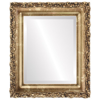 Venice Beveled Rectangle Mirror Frame in Champagne Gold