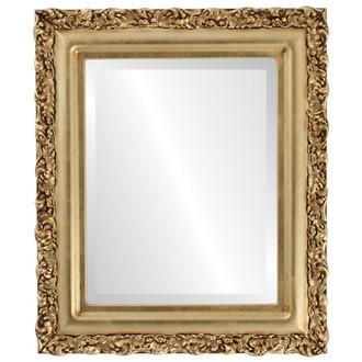 Venice Beveled Rectangle Mirror Frame in Gold Leaf