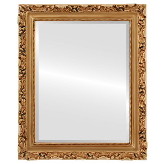 Rome Beveled Rectangle Mirror Frame in Gold Paint