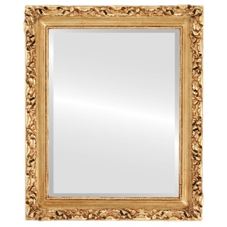 Rome Beveled Rectangle Mirror Frame in Gold Leaf