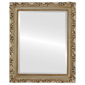 Rome Beveled Rectangle Mirror Frame in Silver