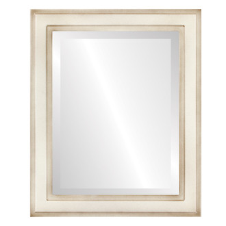 Wright Beveled Rectangle Mirror Frame in Taupe