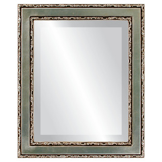 Monticello Beveled Rectangle Mirror Frame in Silver Leaf with Brown Antique