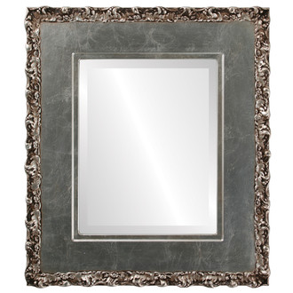 Williamsburg Beveled Rectangle Mirror Frame in Silver Leaf with Brown Antique