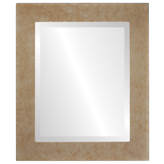 Avenue Beveled Rectangle Mirror Frame in Burnished Silver