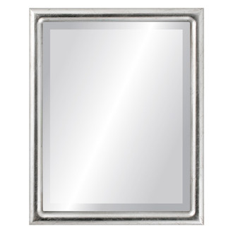 Pasadena Beveled Rectangle Mirror Frame in Silver Leaf with Brown Antique