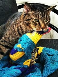Louie & his blanket