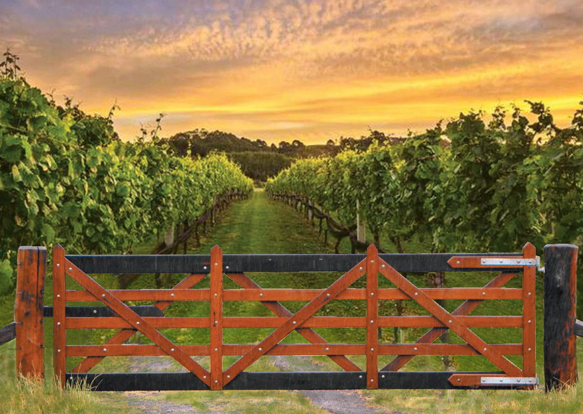 Single Vineyard gate