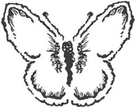 Delicate Butterfly - Red Rubber Stamp