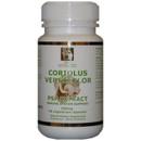 Coriolus mushroom extract