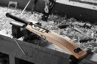 2021 GM Chroma Signature Cricket Bat.