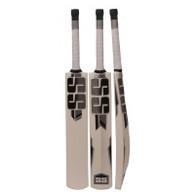 2021 SS Power Kashmir Willow Cricket Bat.
