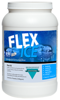 Flex Ice 6 lbs