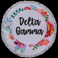 Delta Gamma Sorority Towel Blanket