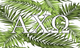 Alpha Chi Omega Sorority Flag- Palm Leaves