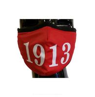 Delta Sigma Theta Sorority Face Mask- Crimson- Founding Year